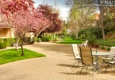 Chateau Cupertino - Cupertino, CA