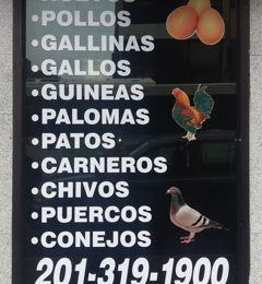 Marzigliano Live Poultry Market - West New York, NJ