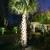 Paradise Palms, Inc.