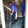 Edmonson Carpet & Upholstery Cleaners Inc