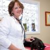 Best Friends Animal Hospital & Pet Hotel