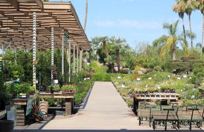Treeland Nurseries Mesa Az