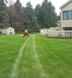 Sunnyside Landscaping & Tree Service - West Chicago, IL