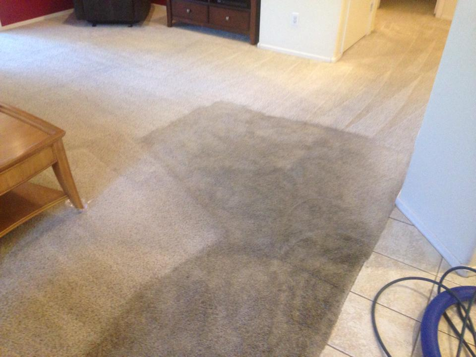 Element Carpet Cleaning