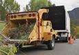 Green America Tree & Landscaping LLC - Henderson, NV