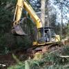 Bonnell Tree Technicians