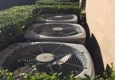 Will's All Pro Plumbing & Air Conditioning - San Antonio, TX. Don't put bushed around your AC units
