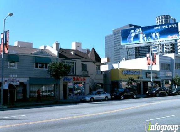Social Service Advocates - Los Angeles, CA