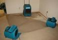 Creative Carpet Care & Restoration - Colorado Springs, CO