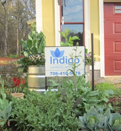 Indigo Landscape - Athens, GA
