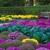 Arreola's Complete Landscape Service