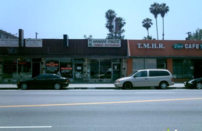 Bamboo Forest Chinese Restaurant - Van Nuys, CA