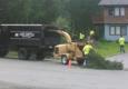 Far North Tree Services - Wasilla, AK