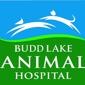 Budd Lake Animal Hospital - Budd Lake, NJ