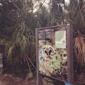 Everglades Safari Park - Miami, FL