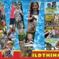 Dade City's Wild Things - Dade City, FL