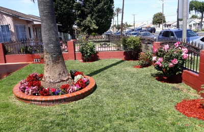 Jessy landscaping - Wilmington, CA