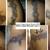 Verno's Custom Tattoo