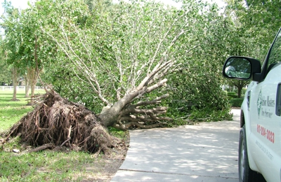 Arbor Masters Tree Service - Grapevine, TX