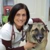 Acosta Veterinary Hospital