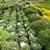 Minor's Garden Center Inc
