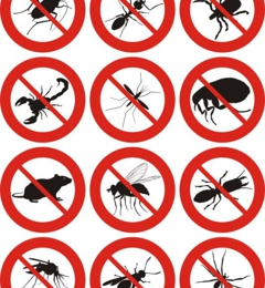 All American Pest Control Services, Inc.