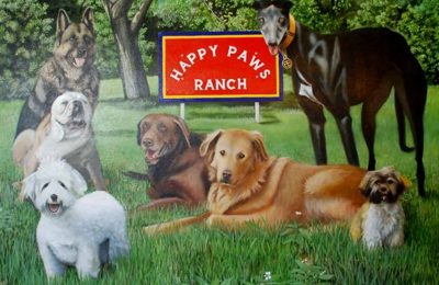 Happy paws ranchg boarding 8951 nalle grade rd north fort myers happy paws ranchg boarding north fort myers fl solutioingenieria Images