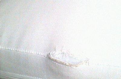 Carlu0027s Patio Inc   Naples, FL. CUSHIONS SHREDDED AT SEAMS.