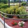 Ed's Tree & Landscape Service Inc - Natick, MA