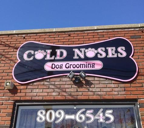Cold Noses - Massapequa, NY