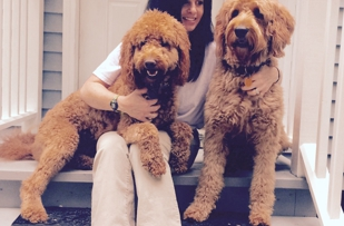 Rebecca with her two Goldendoodles!