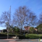 Union City City Clerk Office - Union City, CA