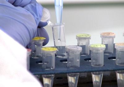 DNA Diagnostic Center - YP com