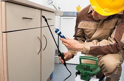 Answer Pest Control LLC - Binghamton, NY