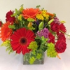 Blooms at the Hills Florist