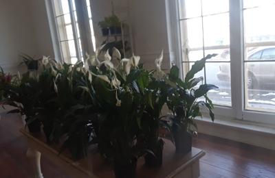 Gardenia Flower Market 2101 W Mitchell St Milwaukee Wi 53204 Yp Com