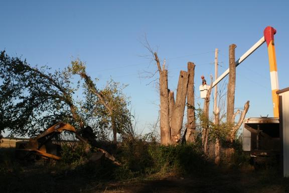 Affordable Tree Service - Inman, KS