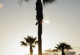 Rimel's Del Mar Highlands - San Diego, CA