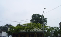 Waterbury Coach House