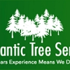 A Atlantic Tree Service