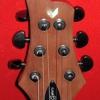 Ferro Guitars, Inc.