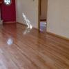 Ideal Floor Co.