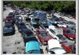 Teddy Bears Auto Parts & Salvage Inc - Holiday, FL