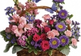 Darla's Florist - North Richland Hills, TX