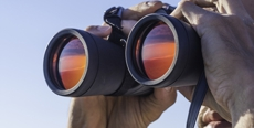 Homeowners should have a pair of binoculars on hand for DIY roof inspections.