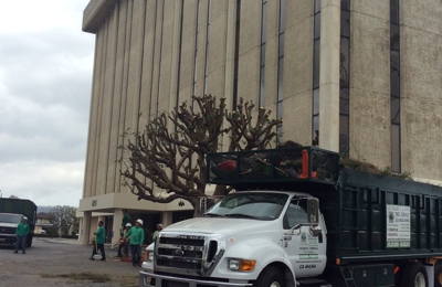 Gutierrez and Son's Tree Service and Landscaping