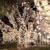 Christmas King Light Install Pros Anaheim
