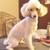 Native Canine LLC