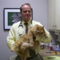 Alamo Heights Pet Clinic Inc - San Antonio, TX