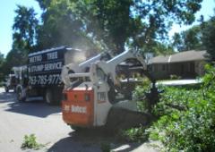 Metro Tree & Crane Service - Minneapolis, MN